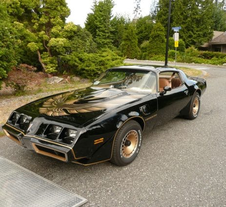 1980 Pontiac Turbo Trans Am
